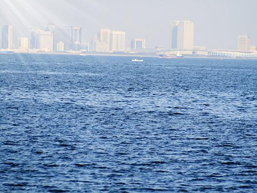 浦安市周辺の海